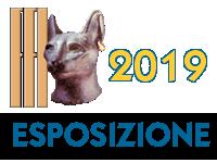 Ravenna 2 - 3 novembre 2019